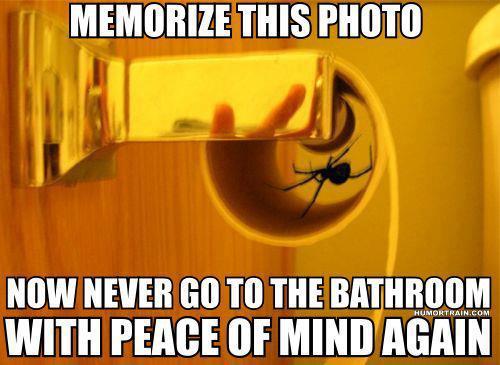 spidernightmare
